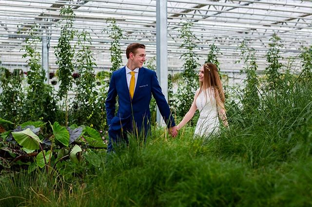 This couple + @holesgreenhouses as the backdrop = the most stunning wedding pictures we've ever seen 💚🌿 - Comment below if you'd LOVE to take photos in this unique space 👇🏻