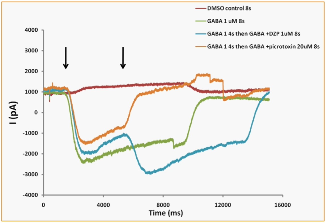 Rapid change of solutions during GABA current activation sweeps.
