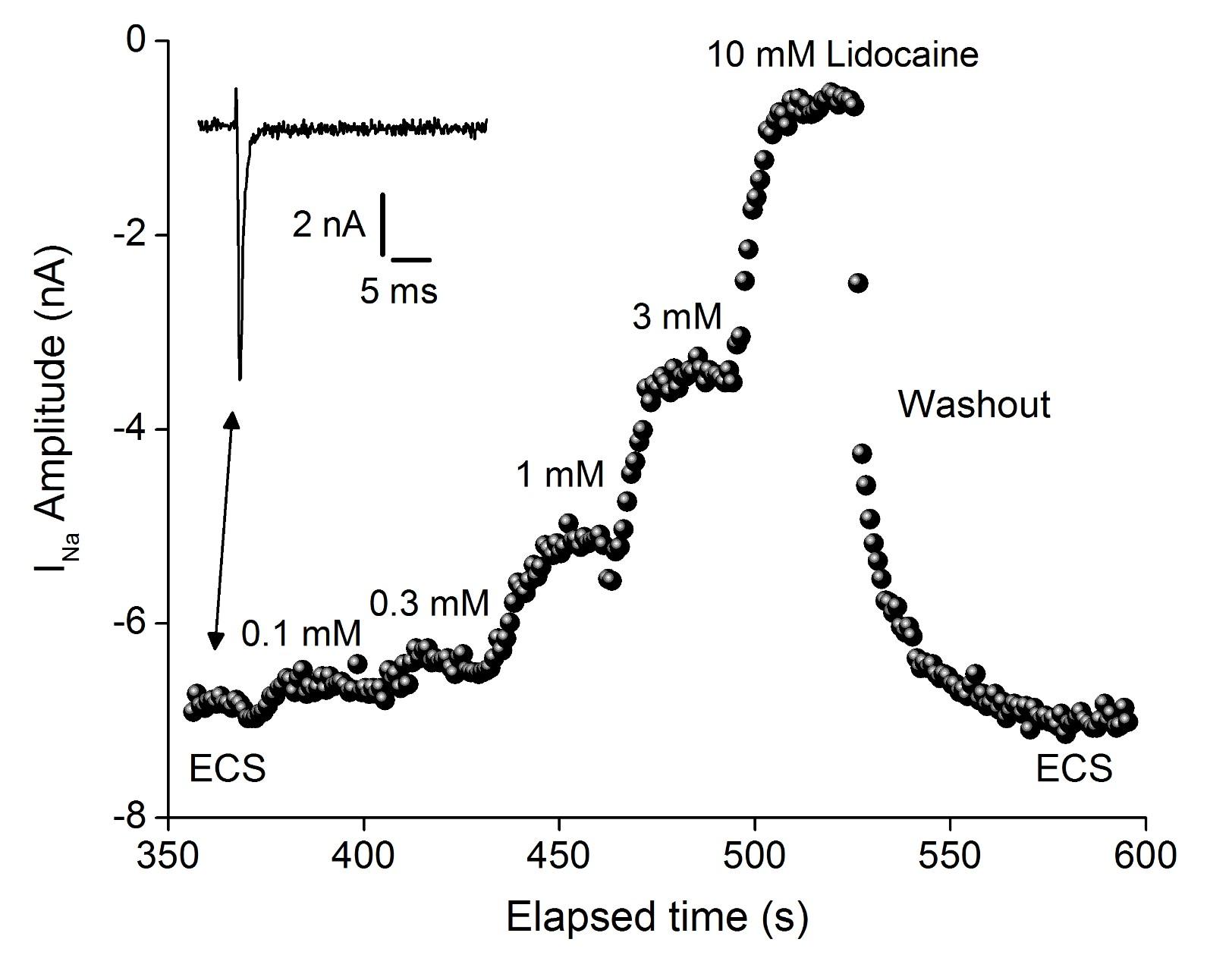 Nav 1.7 Lidocaine dose resonse