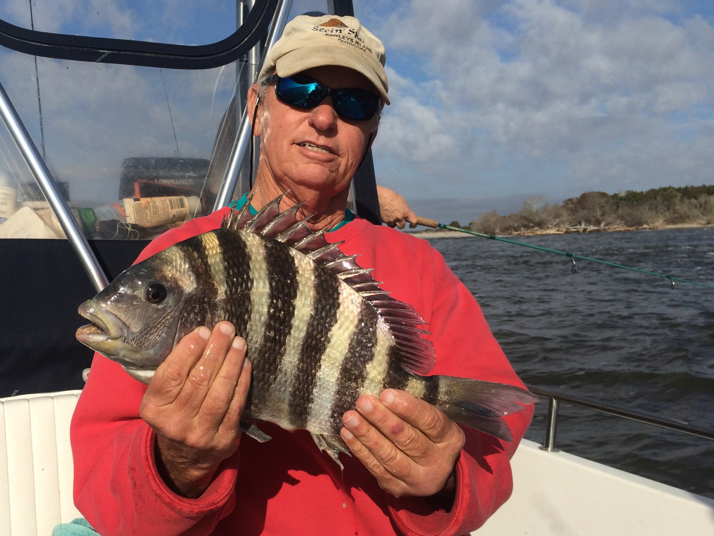 A sheepshead caught by a frequent guest in March 2016.