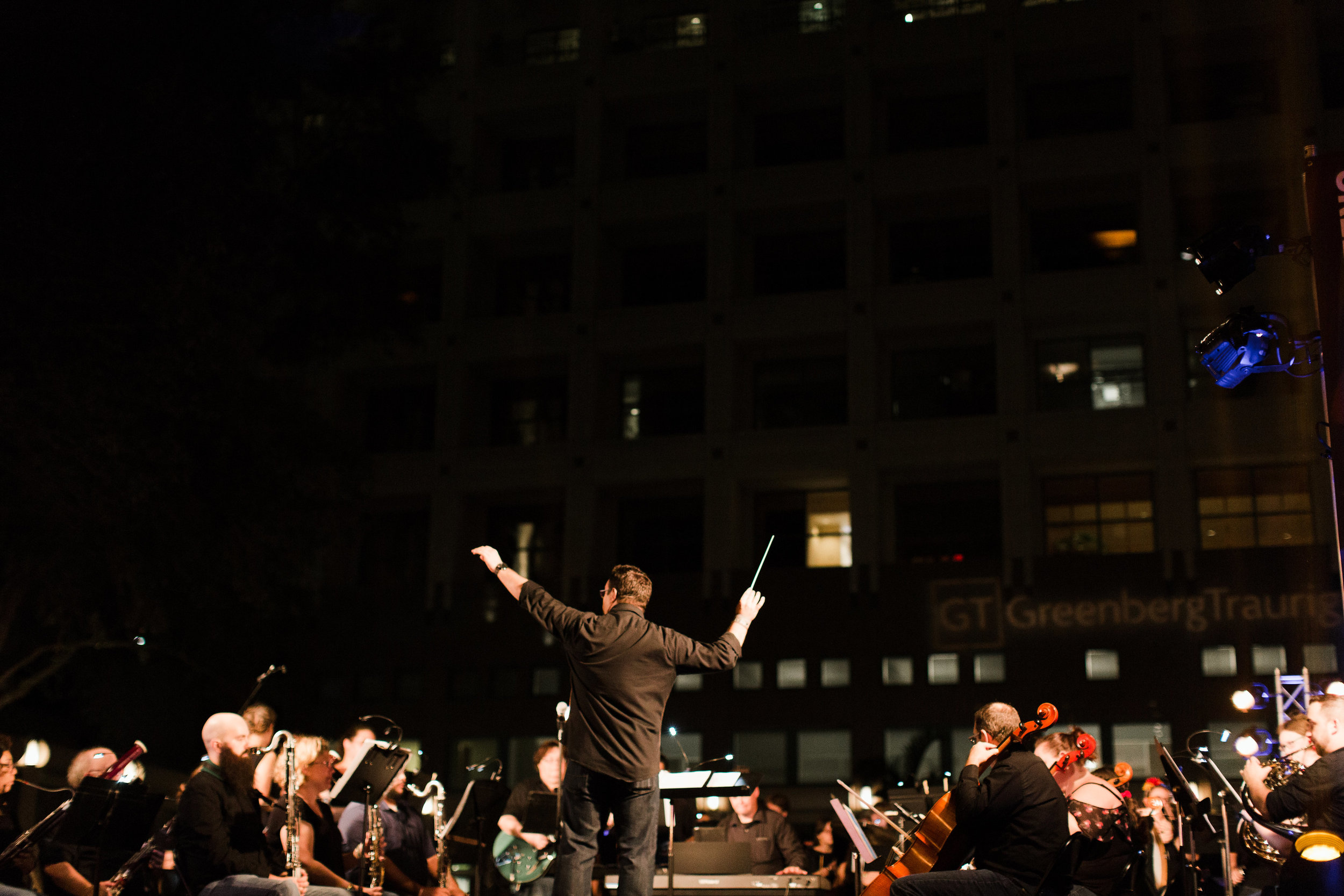 The Immersive Orchestral Experience with the Central Florida Community Arts Orchestra (photo : Vine and Light Photography)
