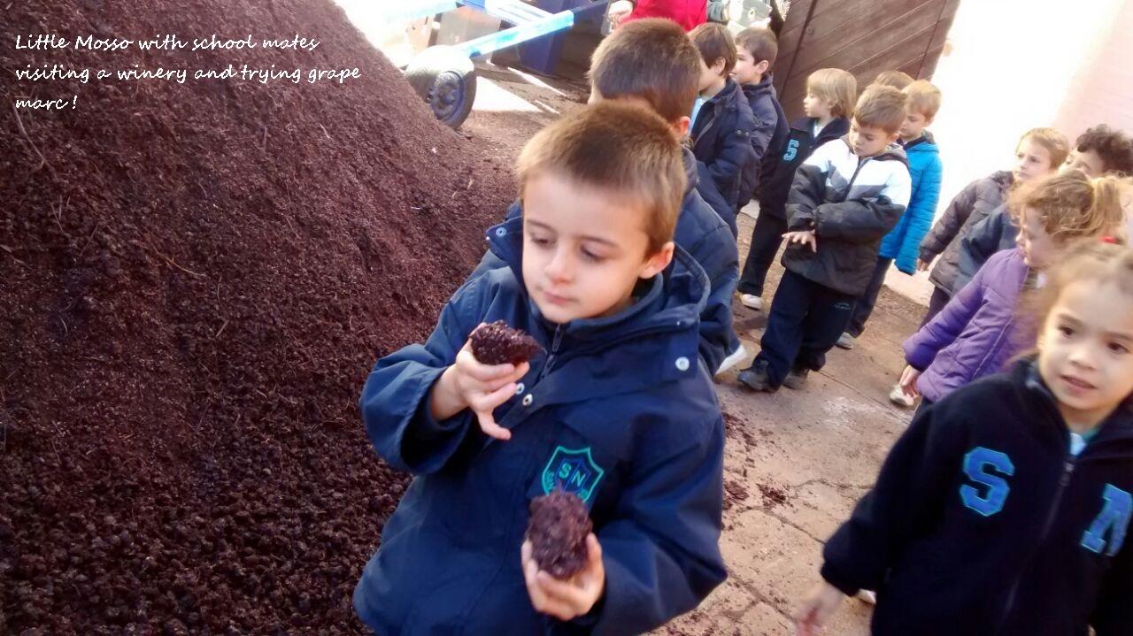 School at winery.JPG