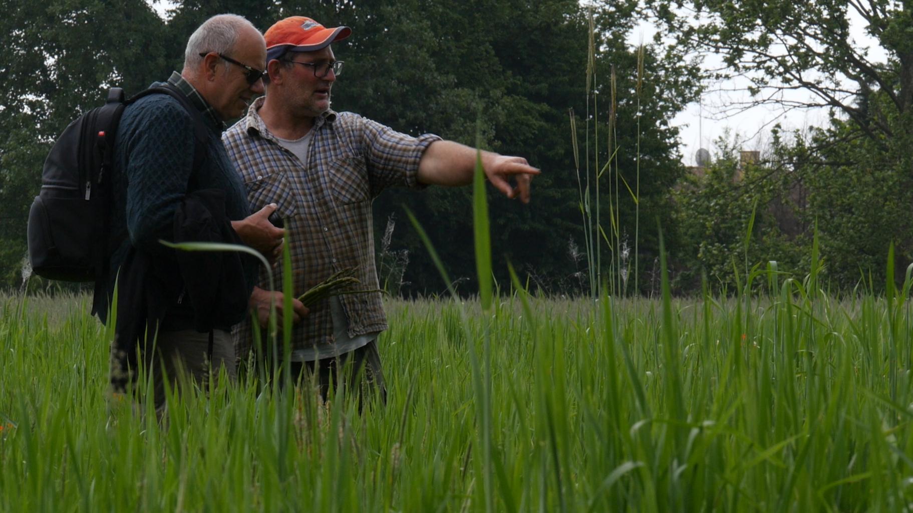 video azienda agricola