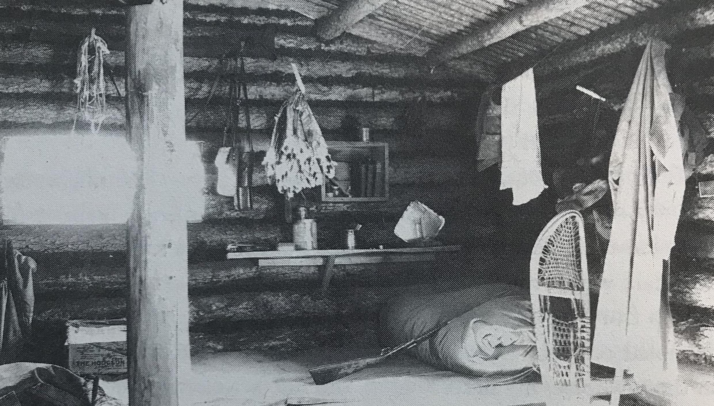 Patterson's cabin.