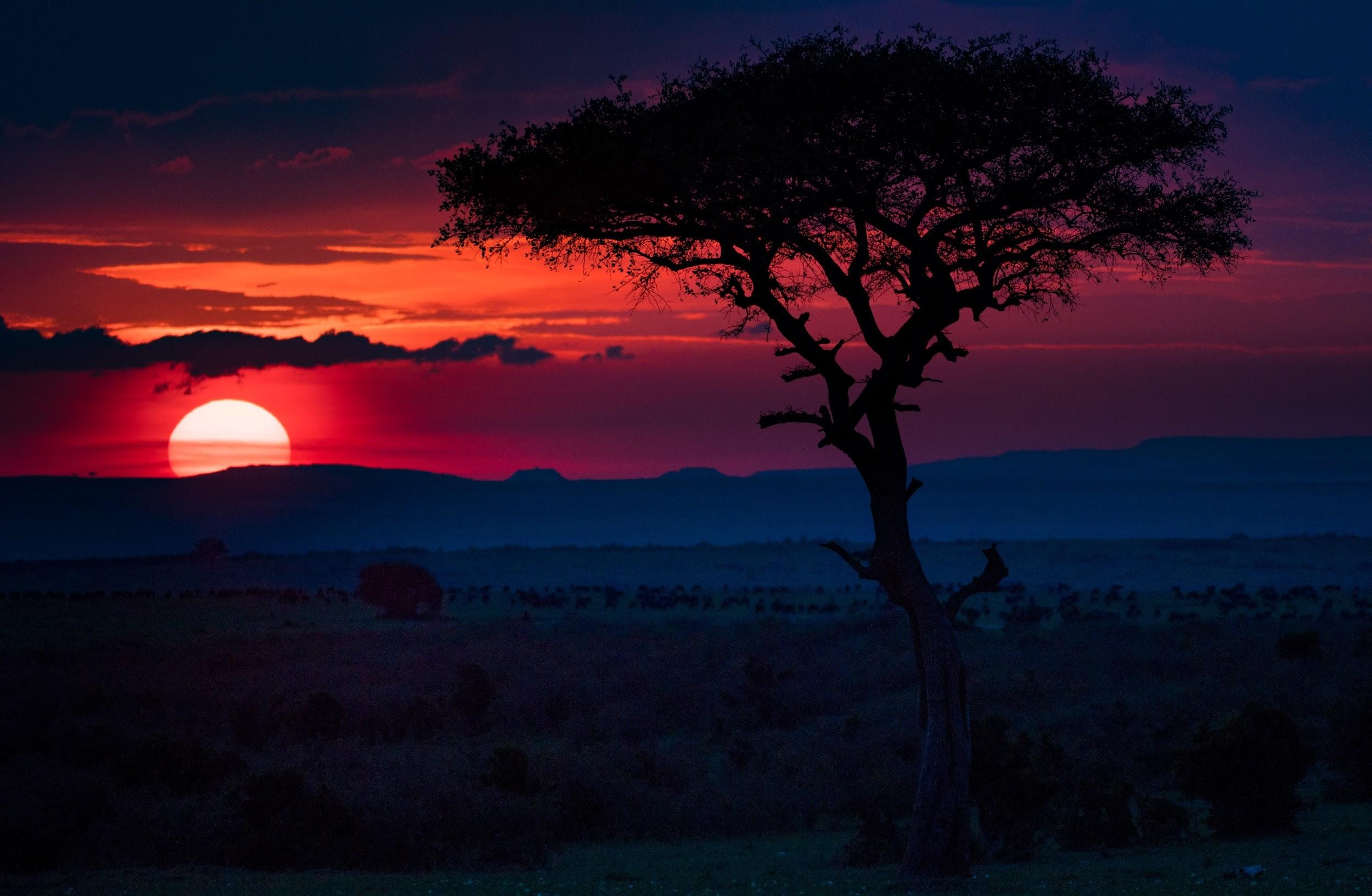 sunset view masaimara safari africa.jpg