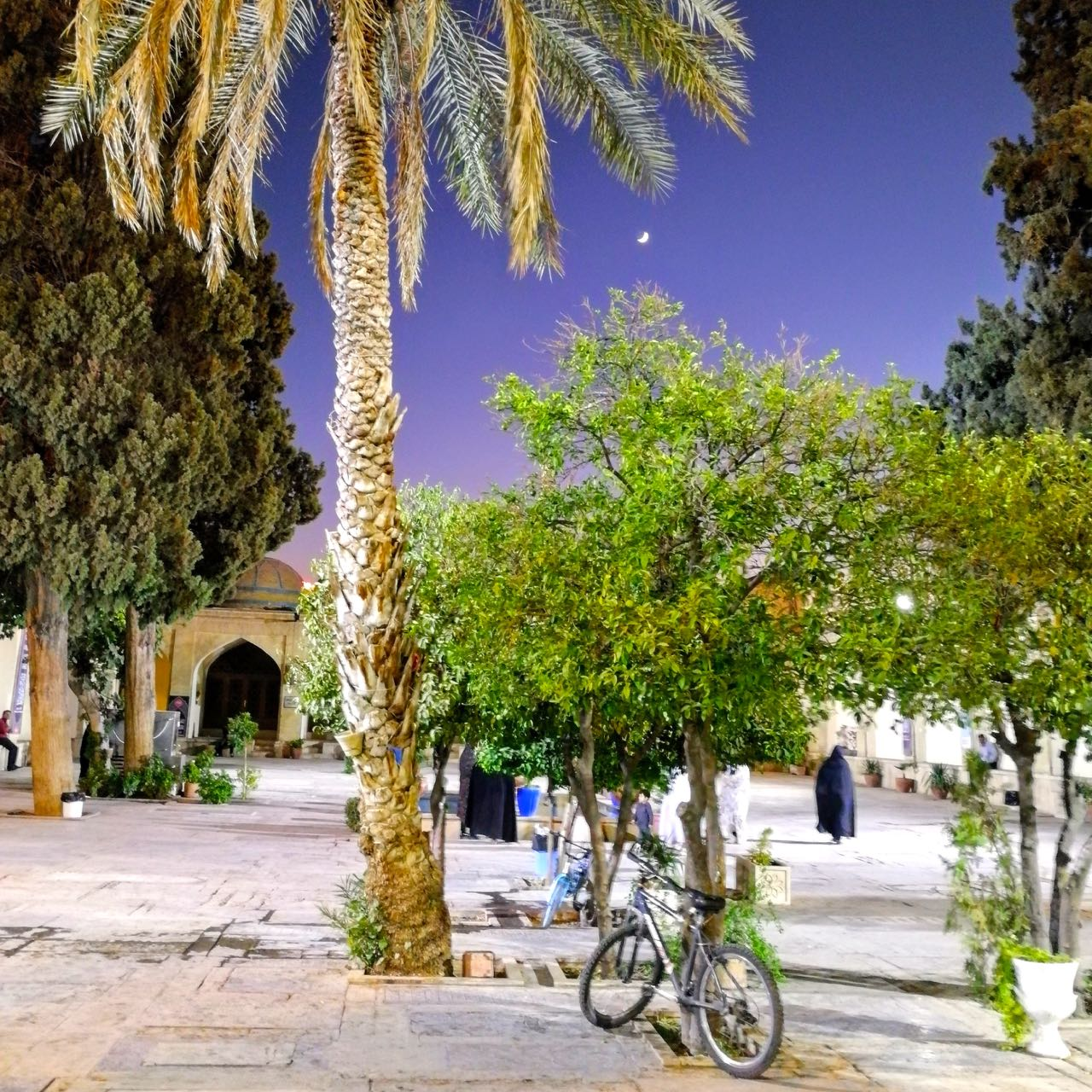 Iran-Shiraz-imamzadeh-evening.jpg