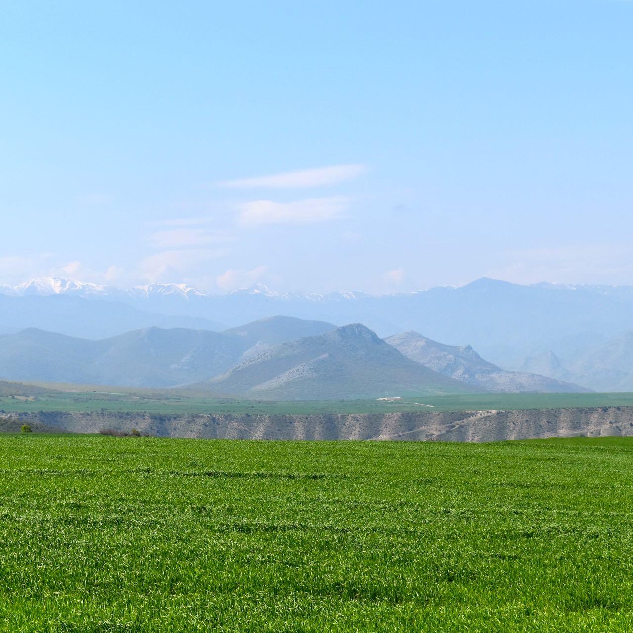 Iran-NW-greenery.jpg