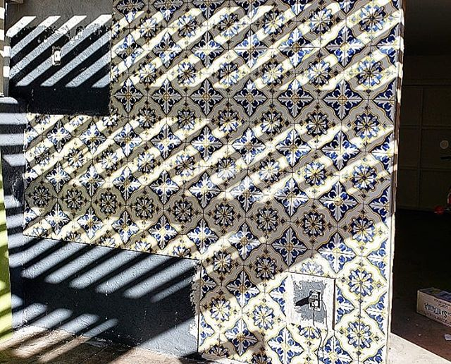 Making progress!  #decotiles #flamingo #tile #sandiego #california #blue #yellow #outside #cementtile #decortiles #design #fun #havingfun #herewego #ihavethisthingwithtiles #lovewhatyoudo #progress #remodel #style #tilestyle #tilelove #tileinstallation #tiler #tiles #tilework #tileaddiction #tiledesign #tilesetter #tileart #decortiles #tiled
