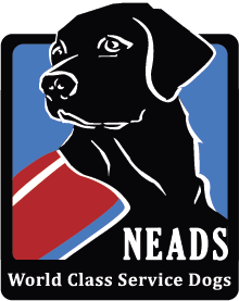April 28, 2019    NEADS Spring Graduation   Please join NEADS in congratulating our newest Service Dog teams at our 2019 Spring Graduation.  When : Sunday, April 28, 2pm-4pm  Where : Montachusett Regional Vocational Technical School (Monty Tech), Fitchburg, MA For more information, please   see our website