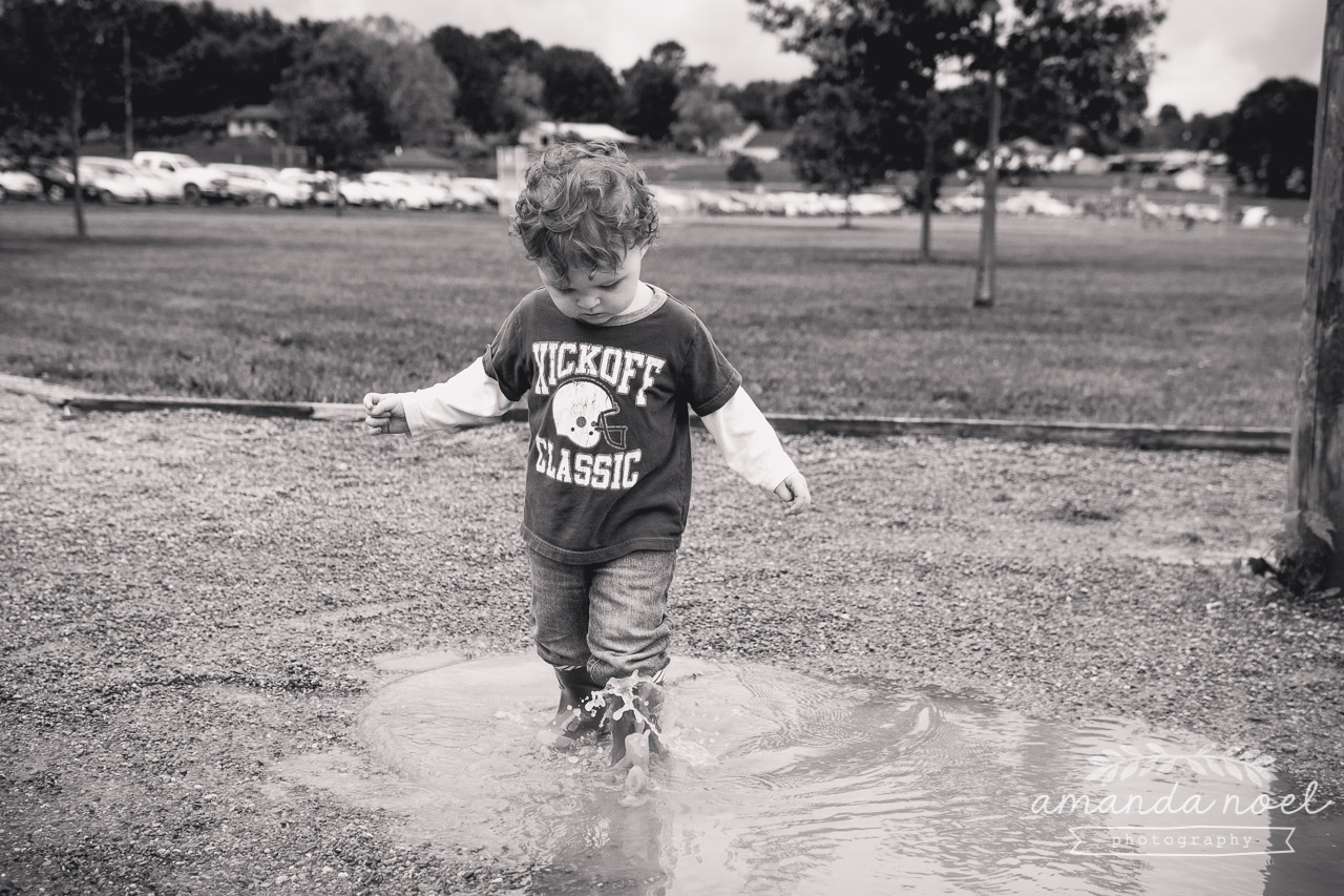 19/365 {puddle}