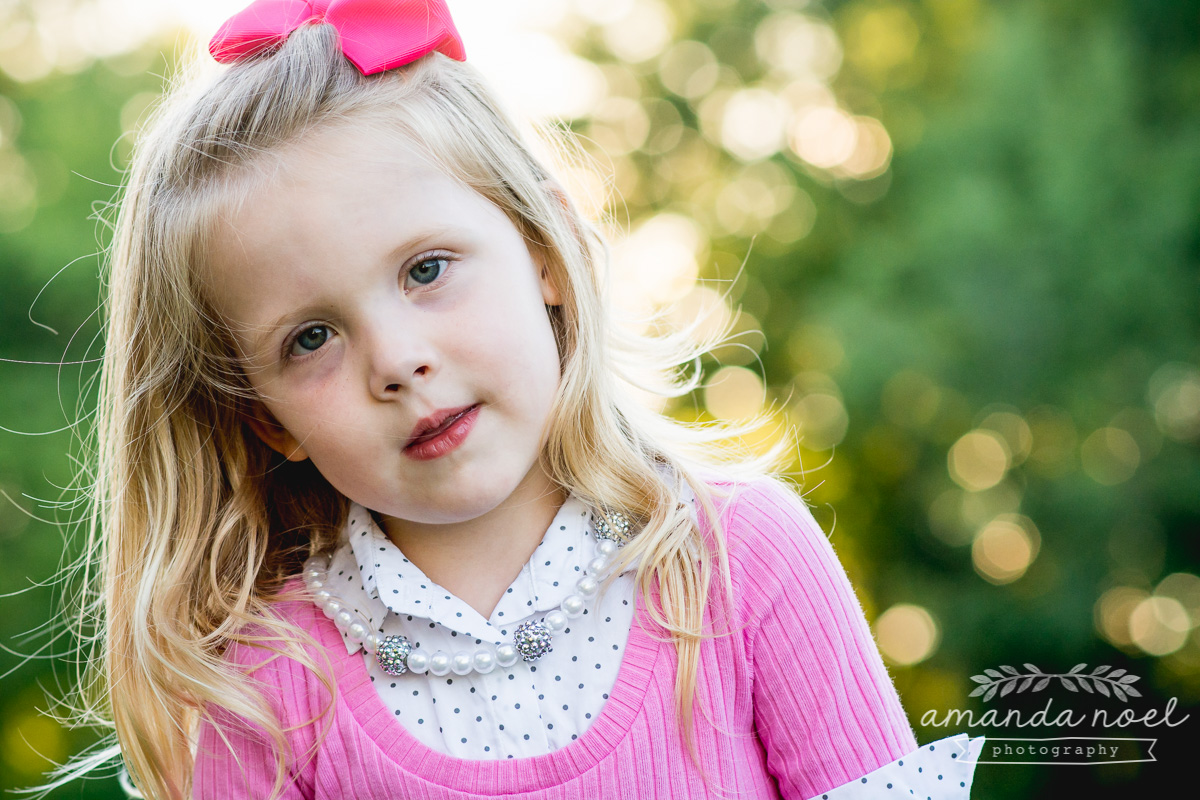 springfield ohio lifestyle family photographer | Amanda Noel Photography | twin girls 4th birthday | girl portrait pretty light