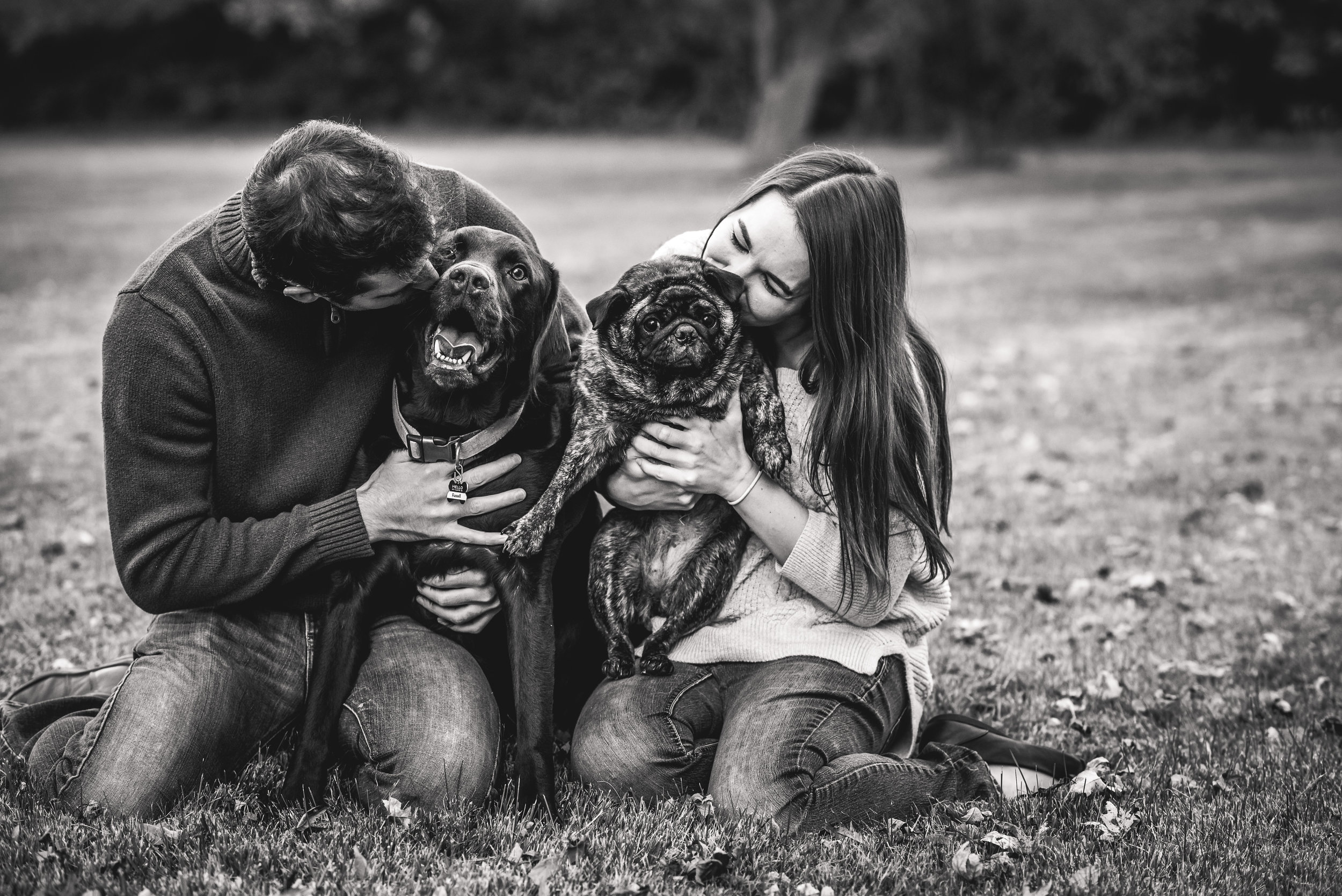 Columbus Ohio Wedding Photographer | couple session with dogs