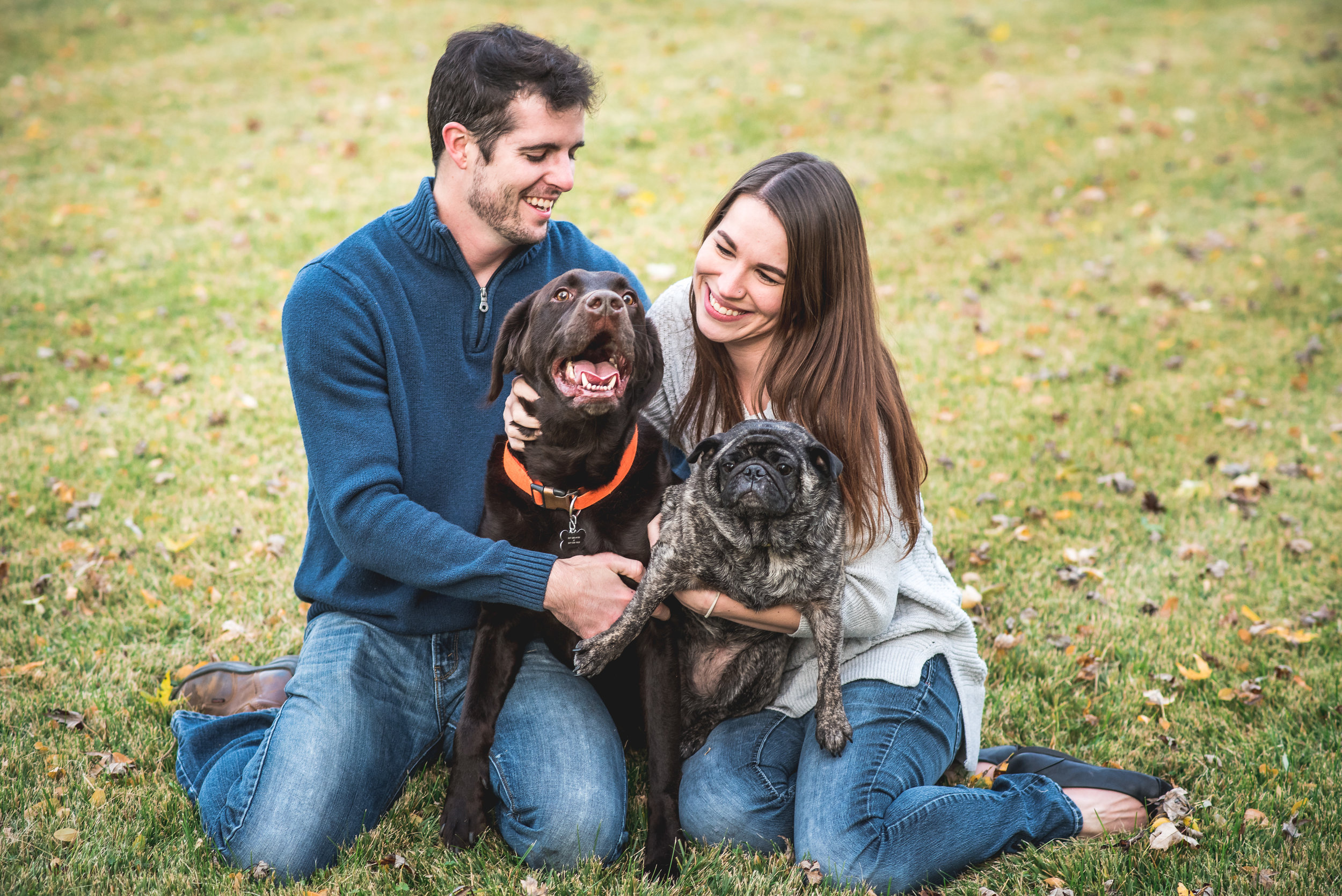 Columbus-Ohio-photographer-couple-session-with-dogs