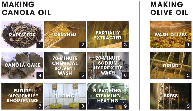 canola-oil-vs-olive-oil-process.jpg