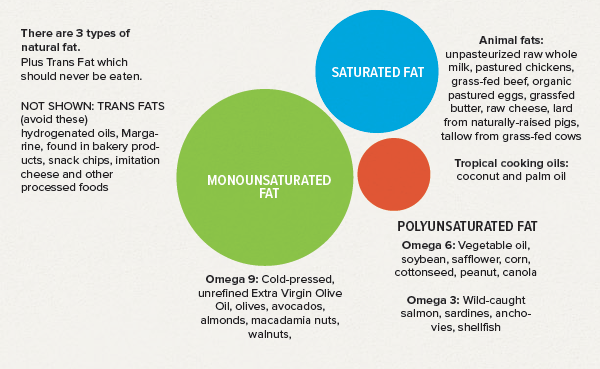Understanding the types of fat available will help us make better choices.
