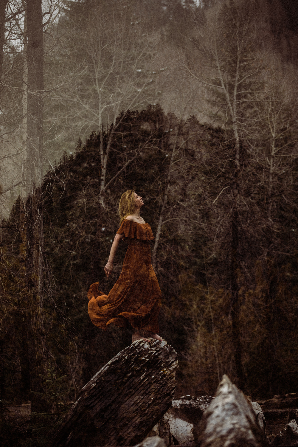 the woman in a russet gown  swept back by stilled winds  faces into yesterday's storm  Jennifer Kapala