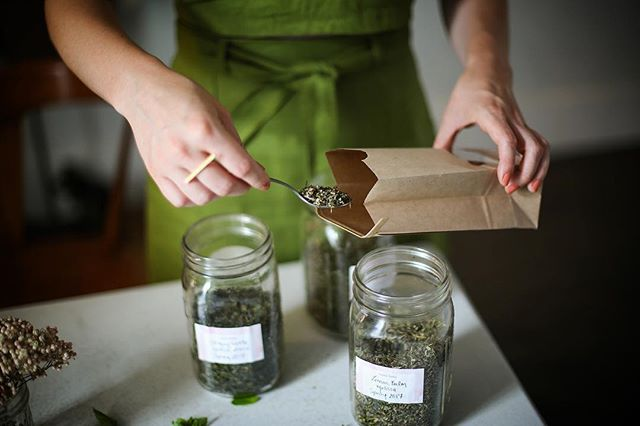 """Using herbs and plants in general for medicine, both physical and mental is such a gift - it's all there for us, growing from the Earth! We just have to change our habits and empower ourselves to take control of our own health. Start with herbal tea!"" - Elise Hanks, @terralunaherbals, 📷 x @sprucestcommons⠀ •⠀ •⠀ •⠀ Read more from Elise's interview via Link In Bio!"