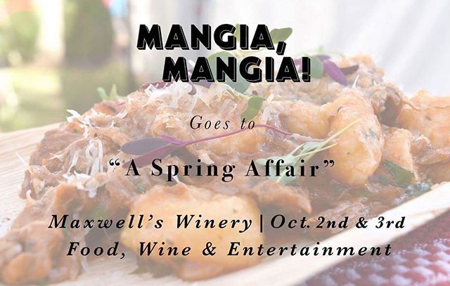 """Making an appearance at @maxwellwines this weekend for """"A Spring Affair"""" will be MANGIA, MANGIA! 🍴 The team from @andrescucina will be serving all and sundry signature polenta chips, house made gnocchi with lamb ragu, brioche filled with chicken cotaletta, Italian donuts and more! 〰 To purchase tickets head to www.springaffair.com.au #asprigaffair #mangiamangia #maxwellwines #italianstreetfood"""