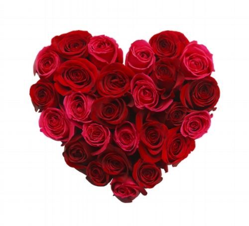 Rose Heart Image small.jpg