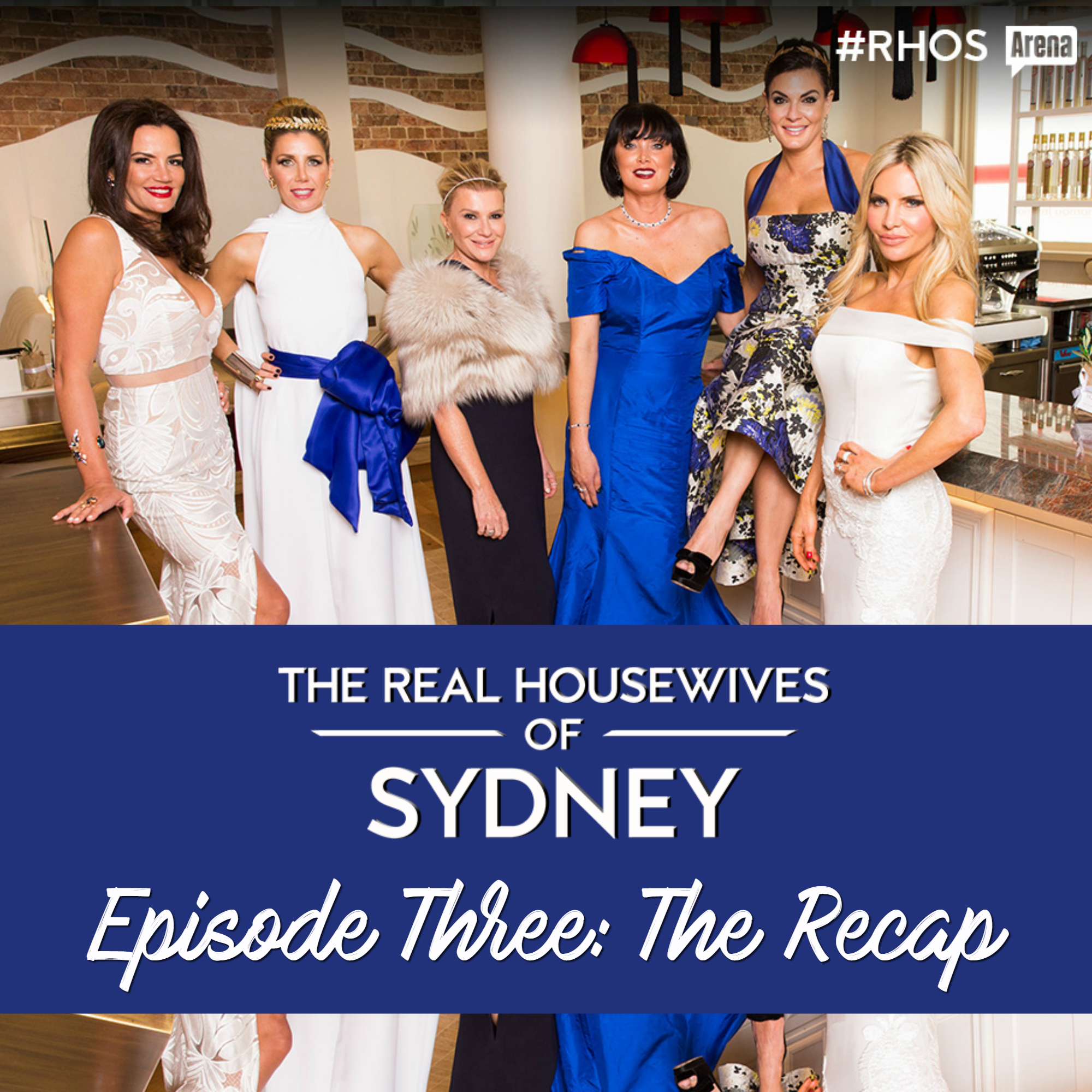 Real Housewives of Sydney Series One Episode Three Recap