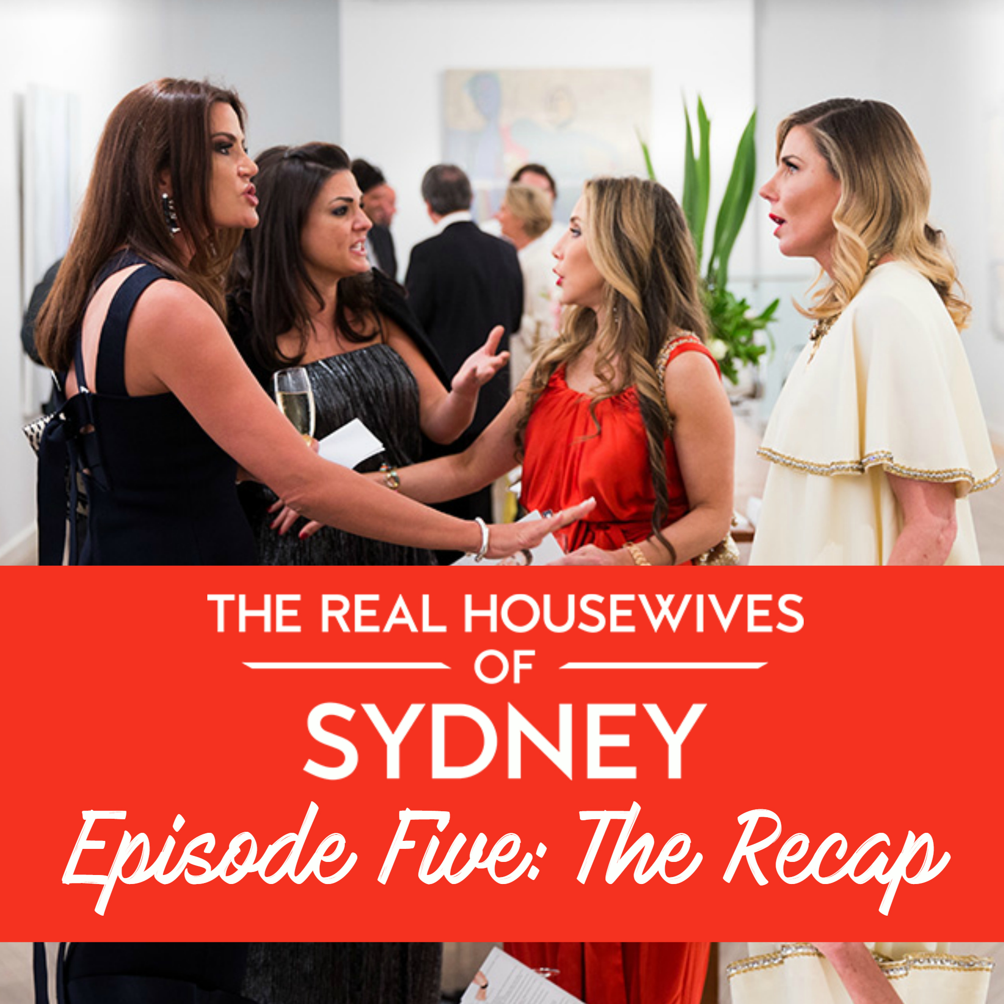 Real Housewives of Sydney Series One Episode Five Recap