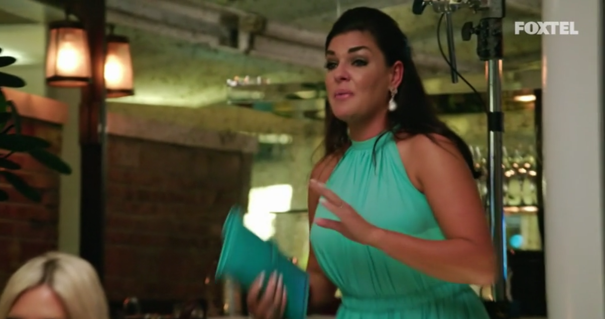 Nicole leaves- The Real Housewives of Sydney Episode 8 Recap Series 1 RHOS S01E08