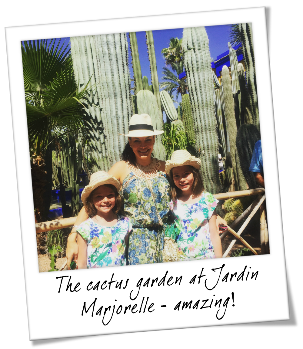 Places you must visit in Marrakesh Morocco - The Cactus Garden at Jardin Marjorelle