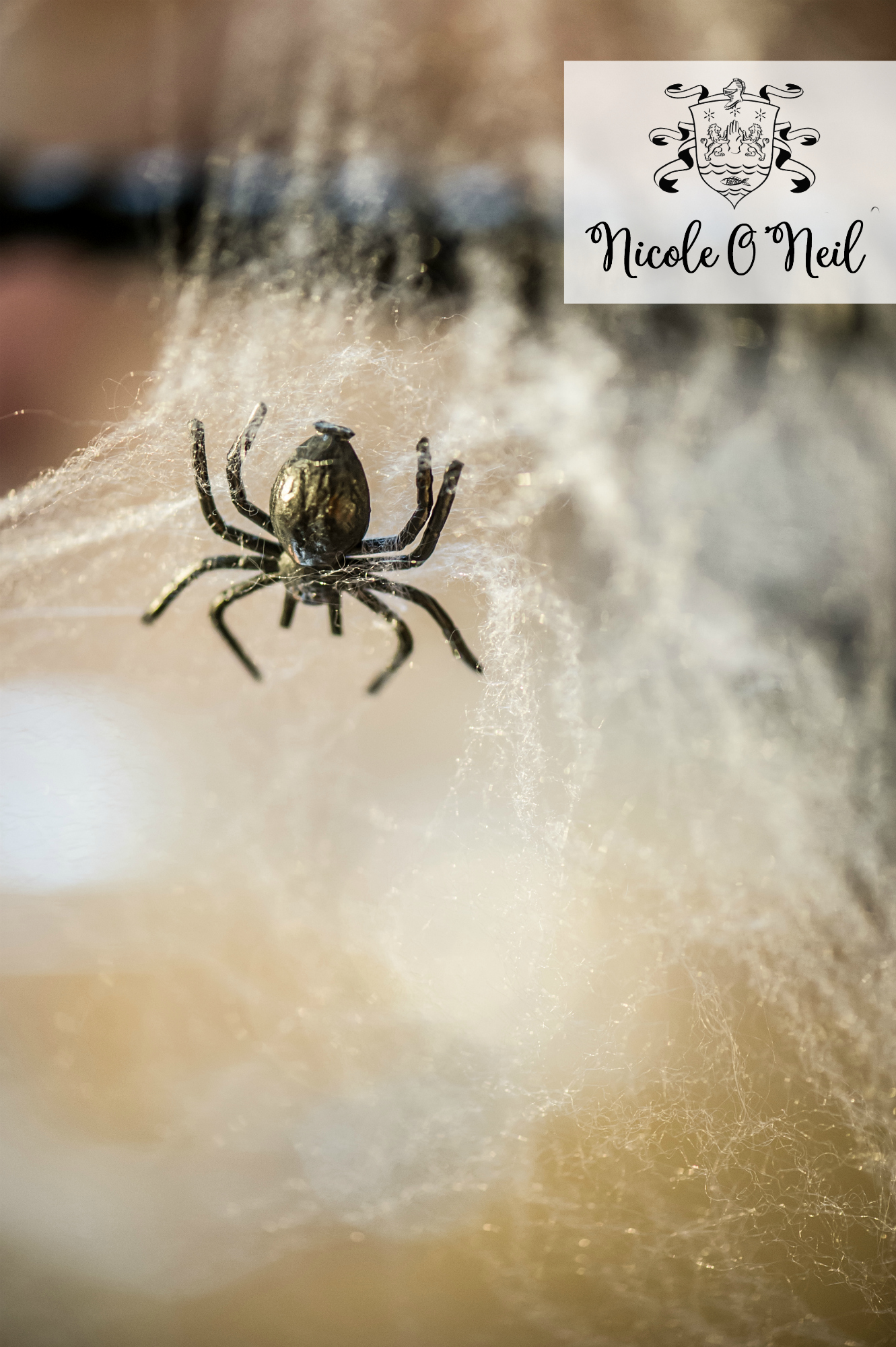 Halloween Party Decoration Ideas and Halloween Table Setting Inspiration - Fake Cobwebs and Spiders