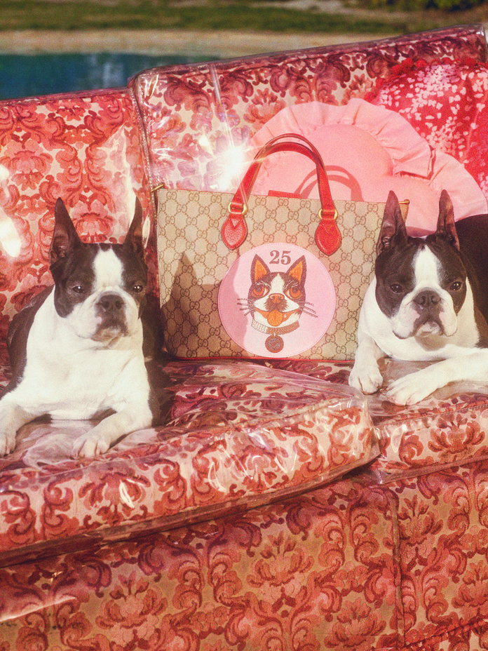 Gucci Chinese New Year of the Dog Collection.jpg