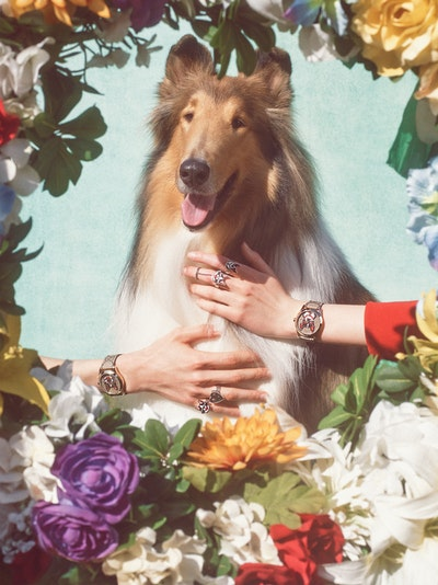 Gucci Chinese Year of the Dog Collection.jpg