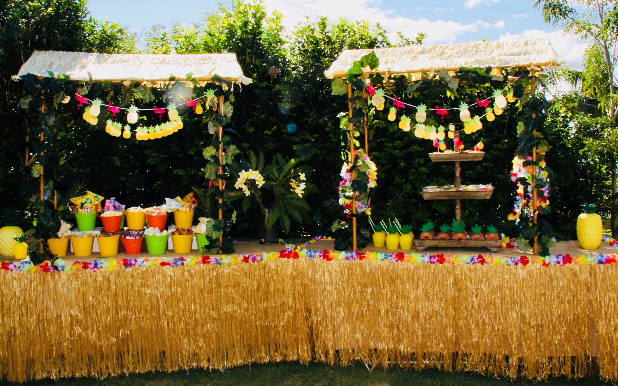 Snack Table for Neve's Hawaiian Luau Party