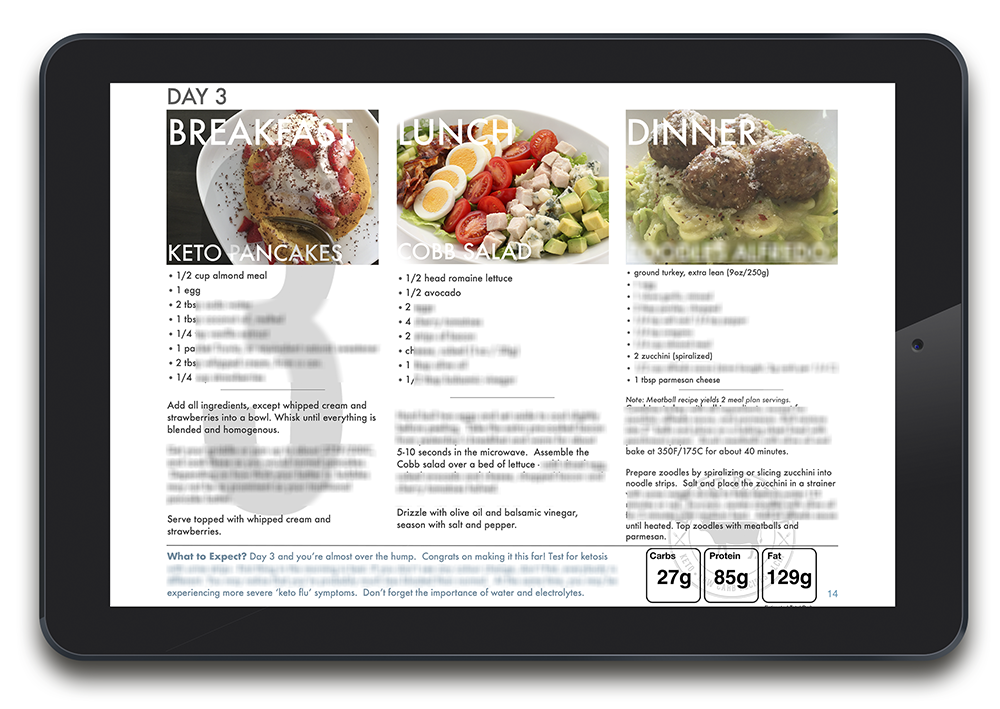 Daily Meal Panel covers all three meals, what to expect, and macros.