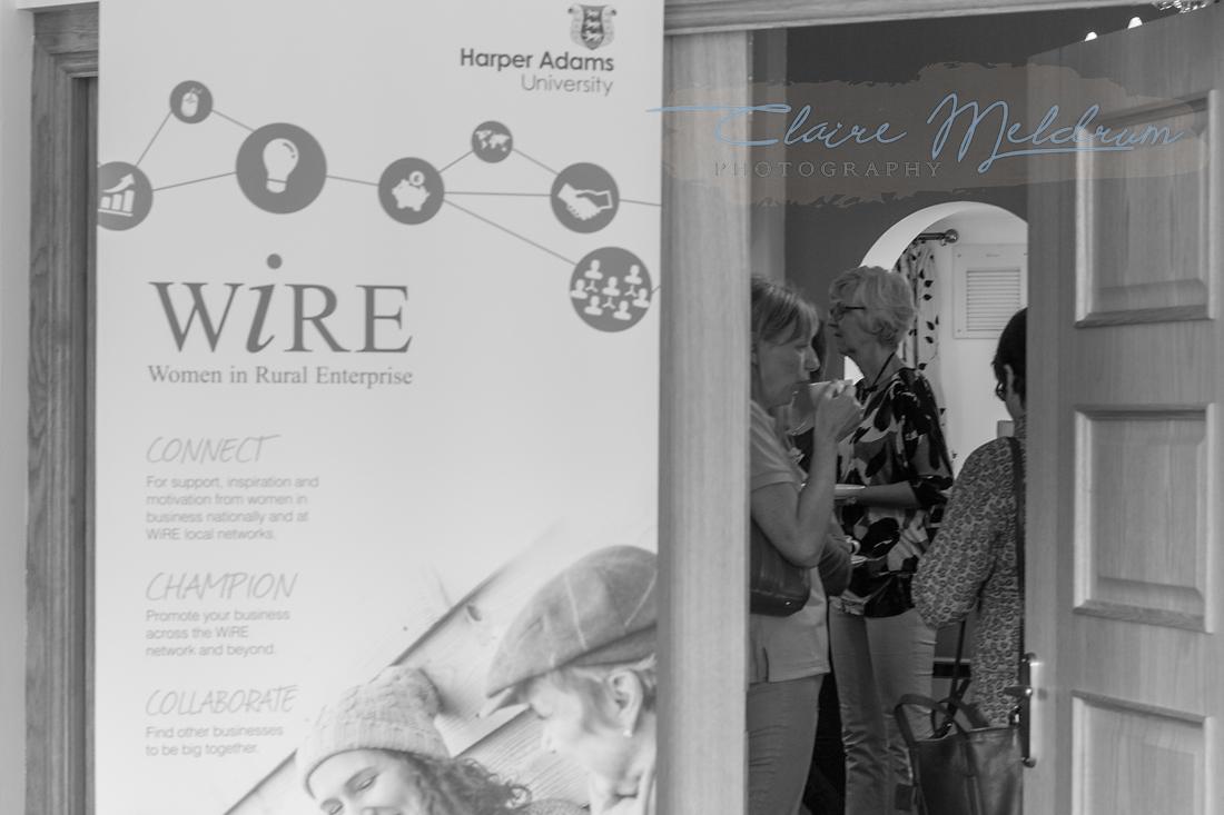 Wire QM2A1298.jpg