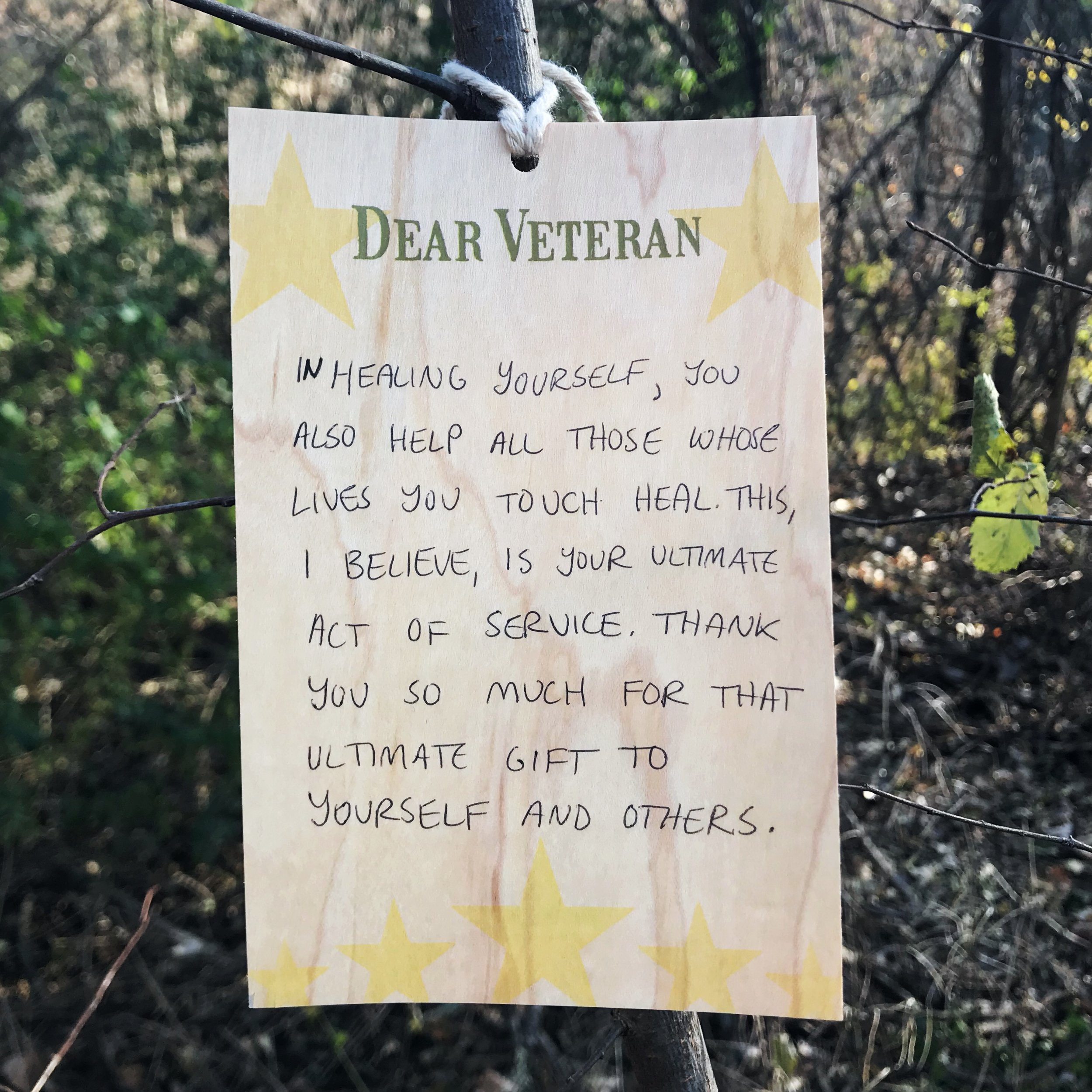 DearVeteran_NOV12_2017.JPG