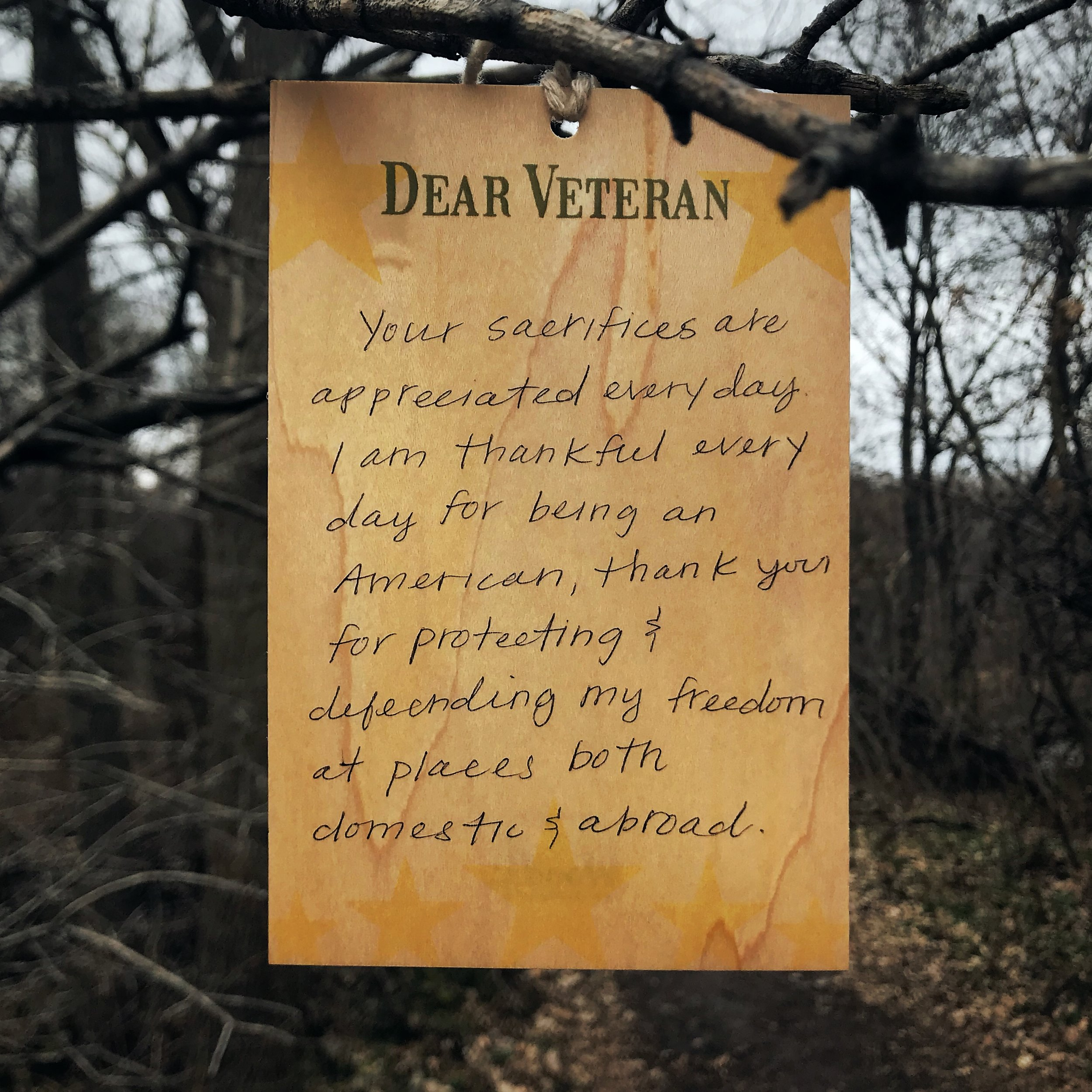 DearVeteran_DEC05_2017.JPG
