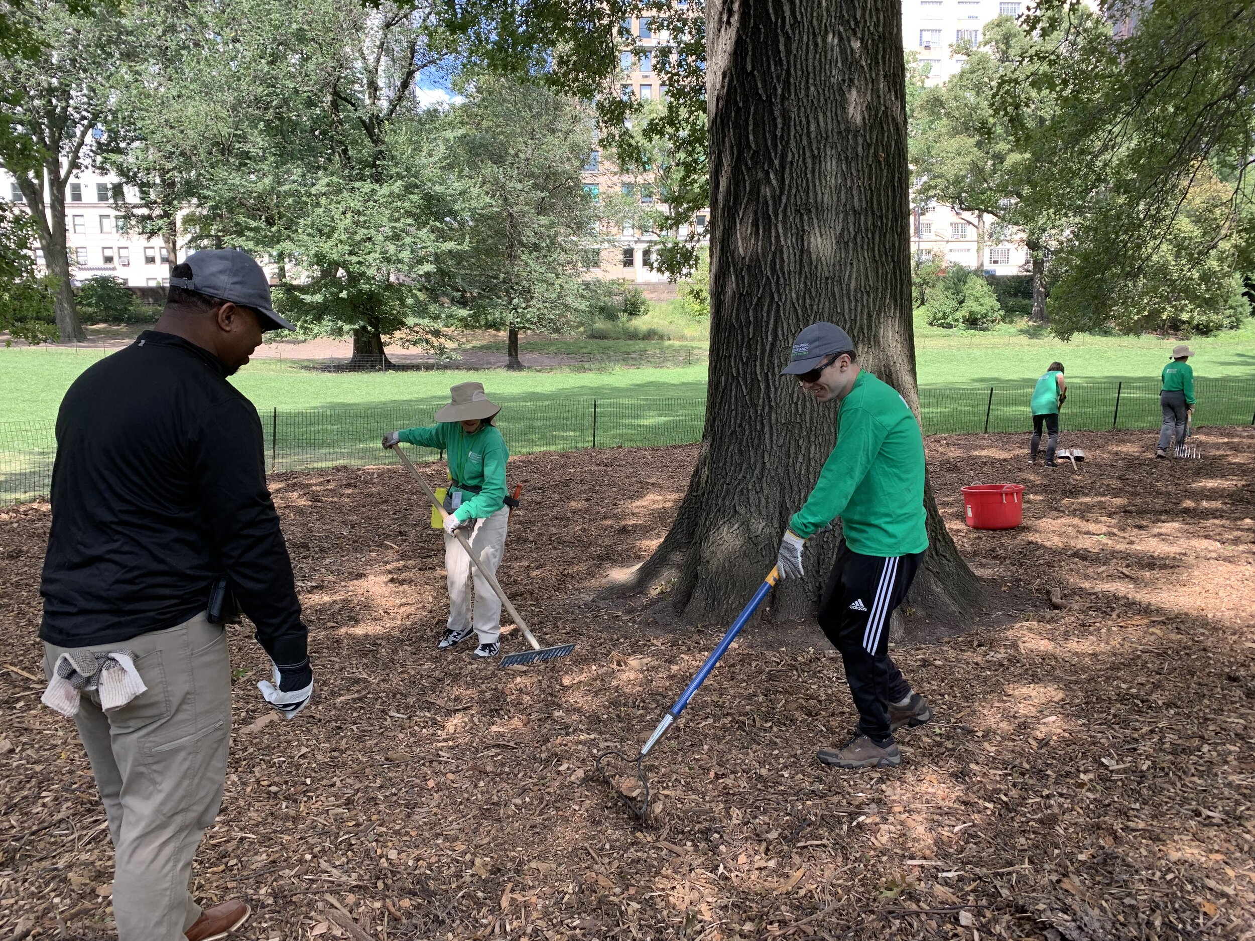 Dustin and Jermaine - Central Park Green Team