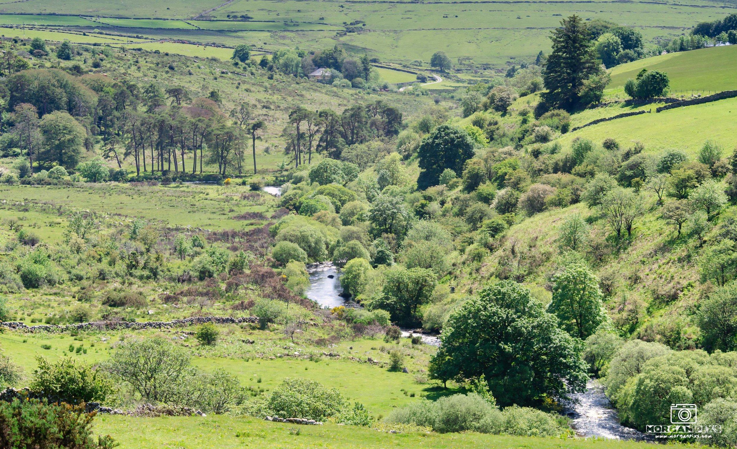 West Dart River
