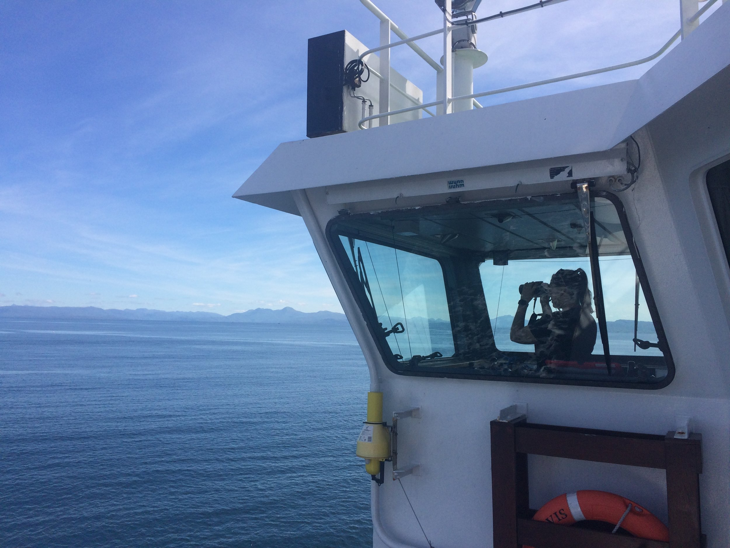 ORCA Marine Mammal Surveyors having recording data on Marine Wildlife as part ORCA OceanWatch 2017.