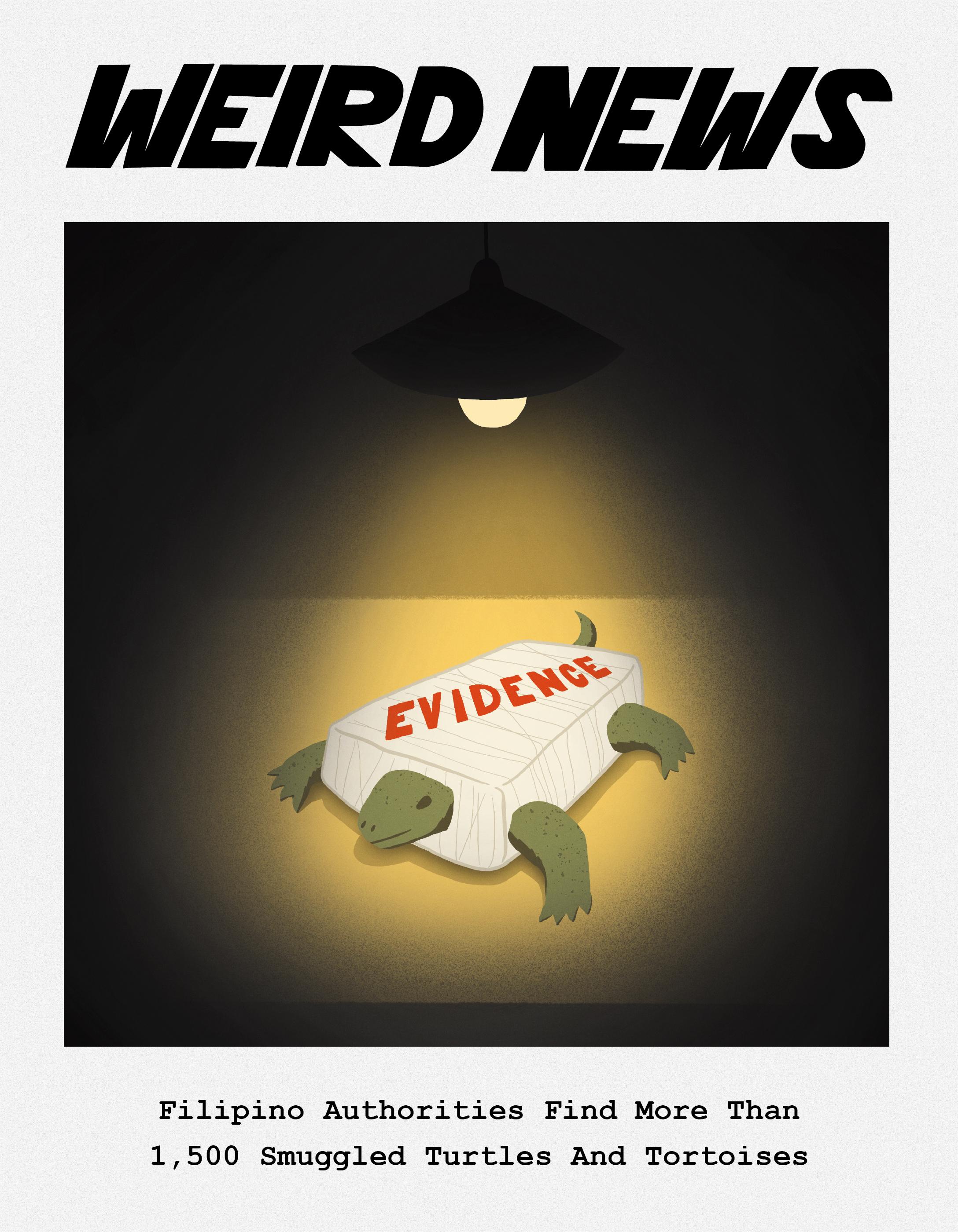 WeirdNews4-01.jpg