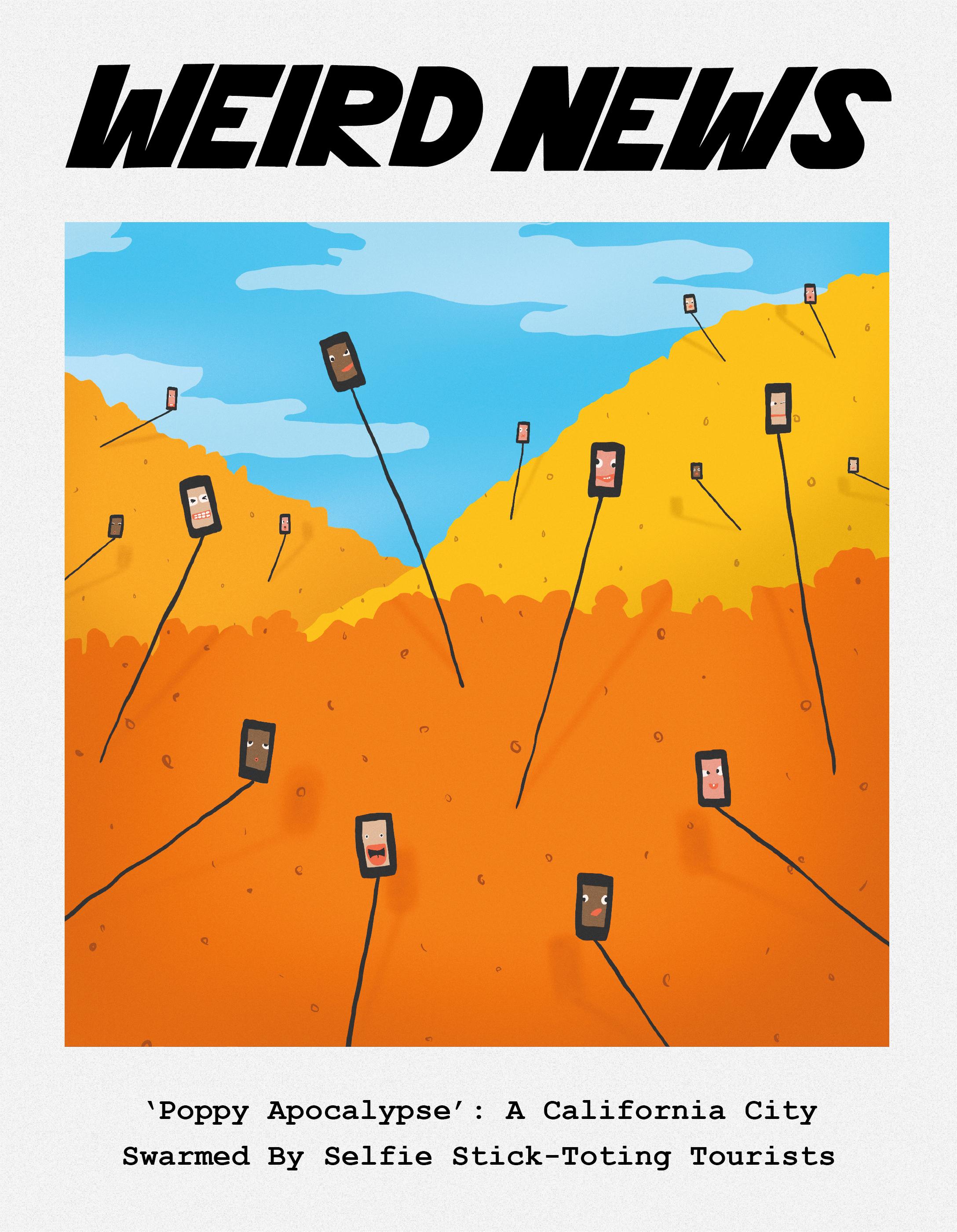 WeirdNews3-01.jpg