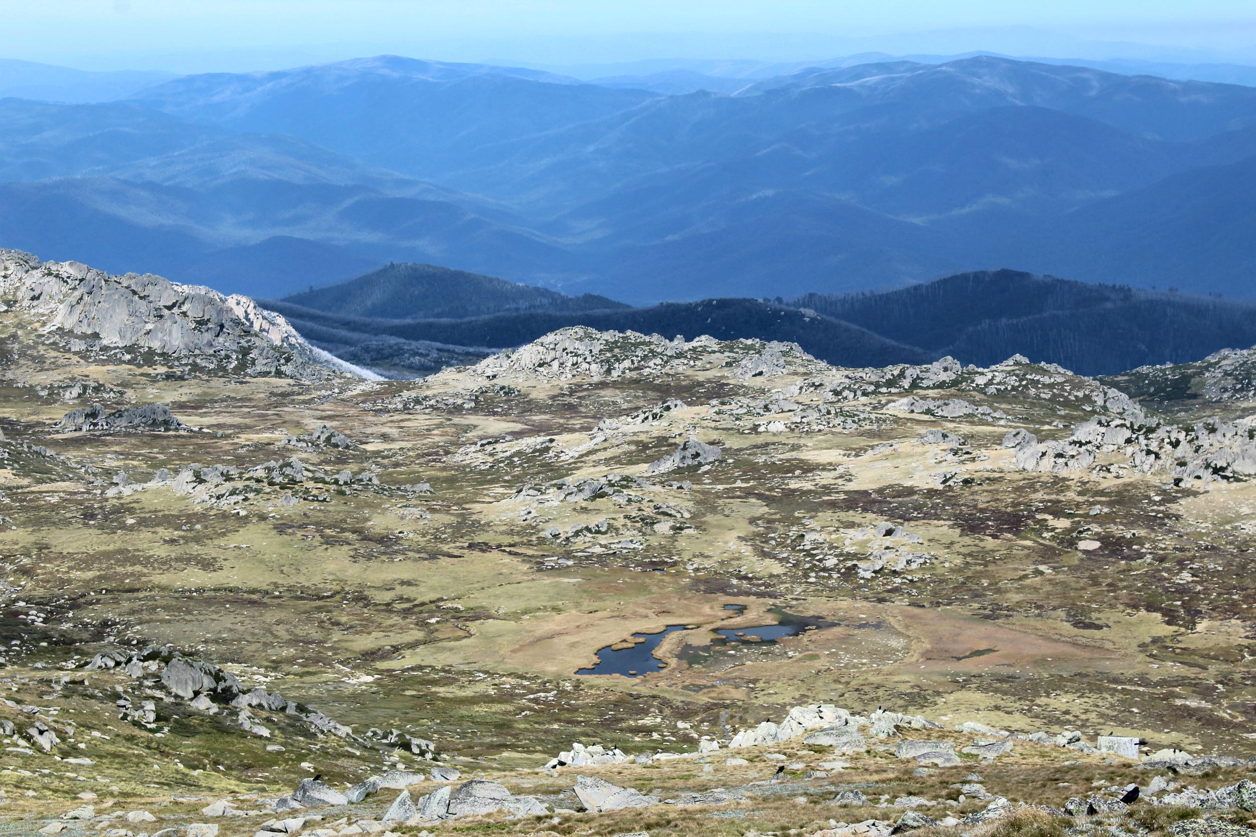 Some views from near the summit,Kosciuszko, Australia – 7,310' (2228m)