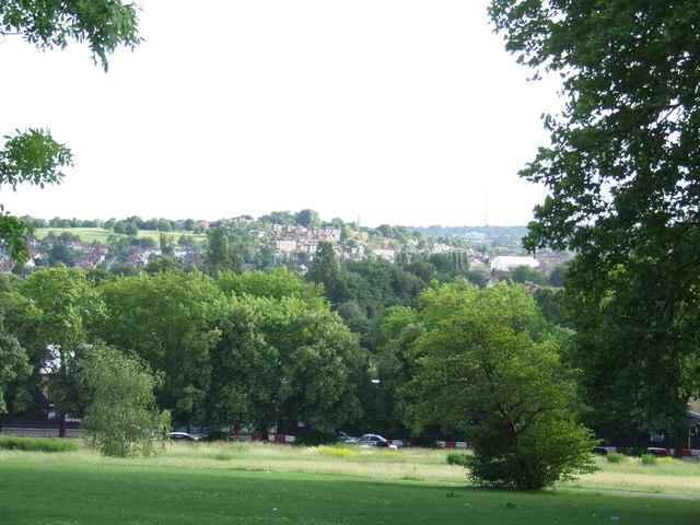 hilly fields 2.jpg