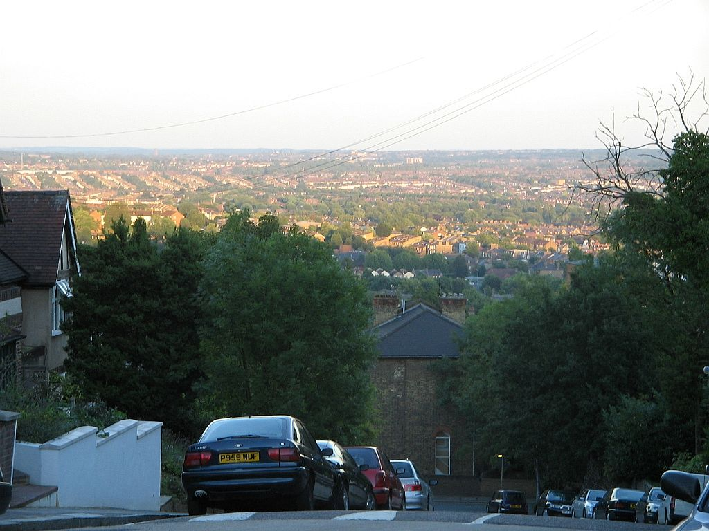 View from Forest Hill