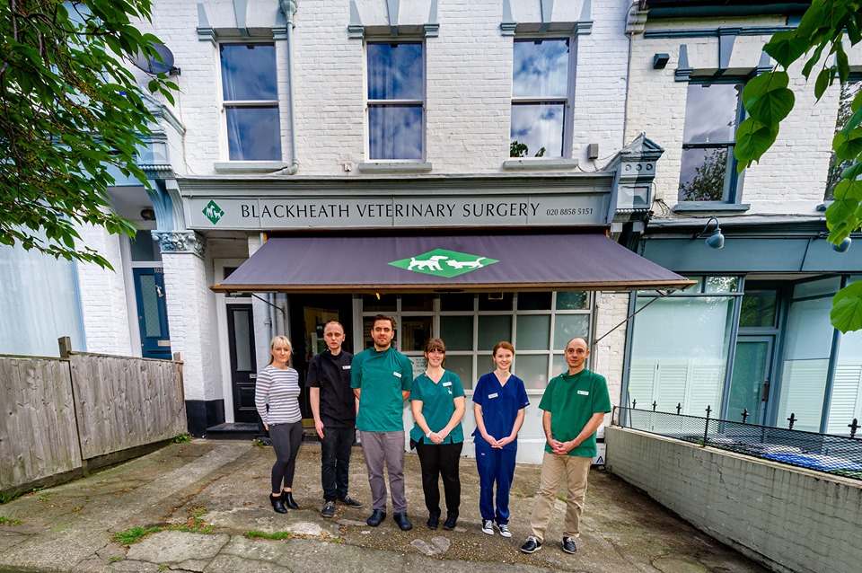blackheath vets south london club