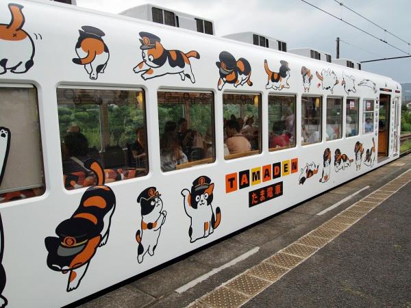 tama-train-600x450.jpg