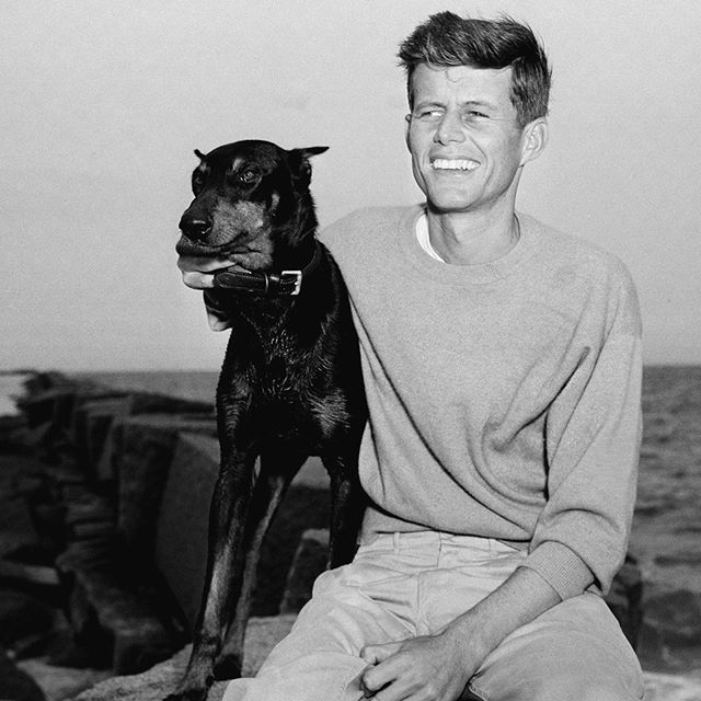 What's your best dog story? . . . . . . . #dogs #dogsofinstagram #style #icon #jfk #story #thestorybar