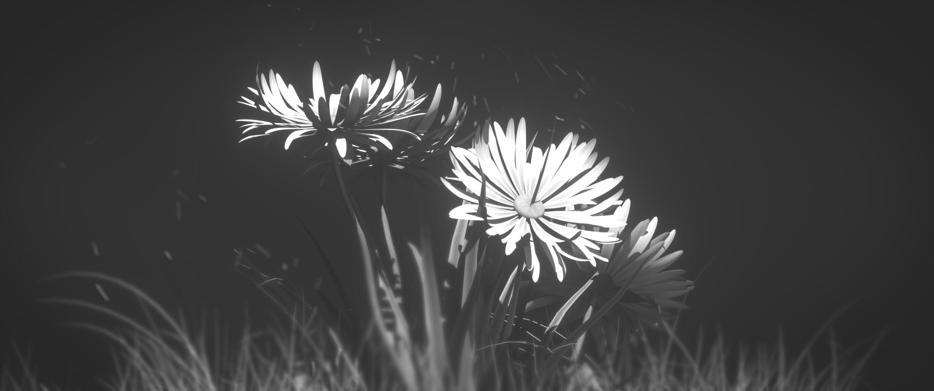 fleur_wide.png
