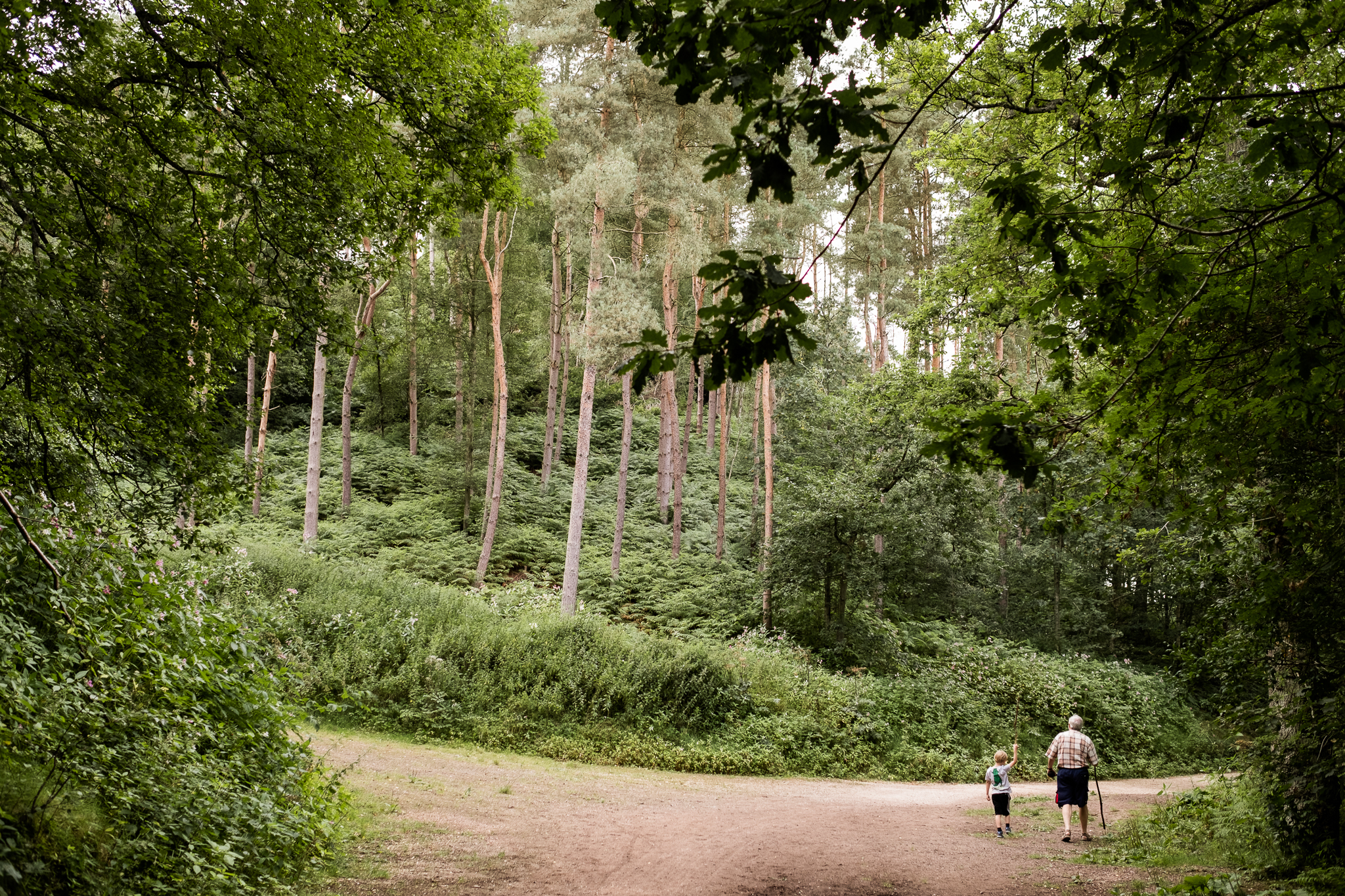07.31.2016 Dimmingsdale Walk Photowalk Staffordshire Ramblers Retreat Trees-29.jpg