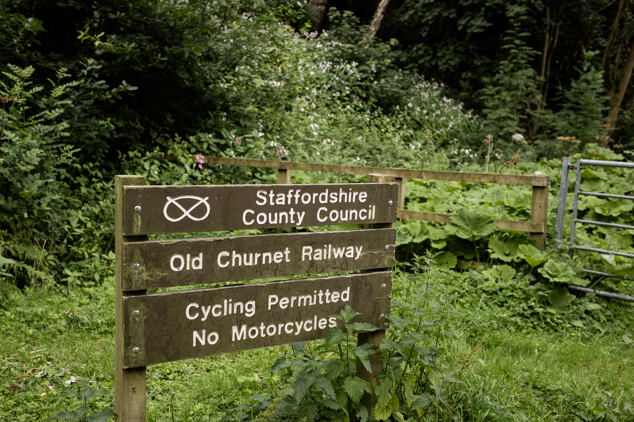 07.31.2016 Dimmingsdale Walk Photowalk Staffordshire Ramblers Retreat Trees-52.jpg