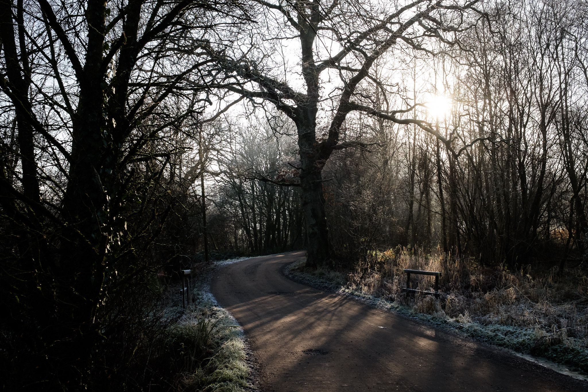 Staffordshire Photowalk Consall Forge Consall Nature Reserve The Black Lion Winter Cold Frosty-8.jpg